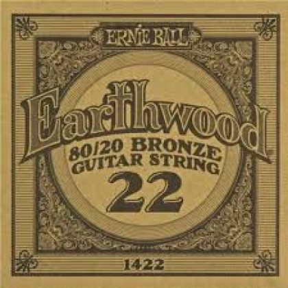 Ernie Ball P01422 EARTHWOOD .22