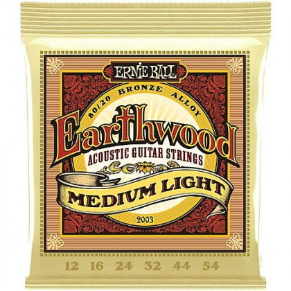Ernie Ball 2003 EARTHWOOD MED LIGHT