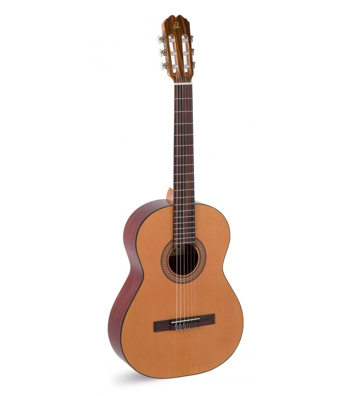 Paloma klasična gitara