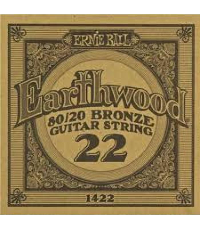Ernie Ball P01422 EARTHWOOD .22